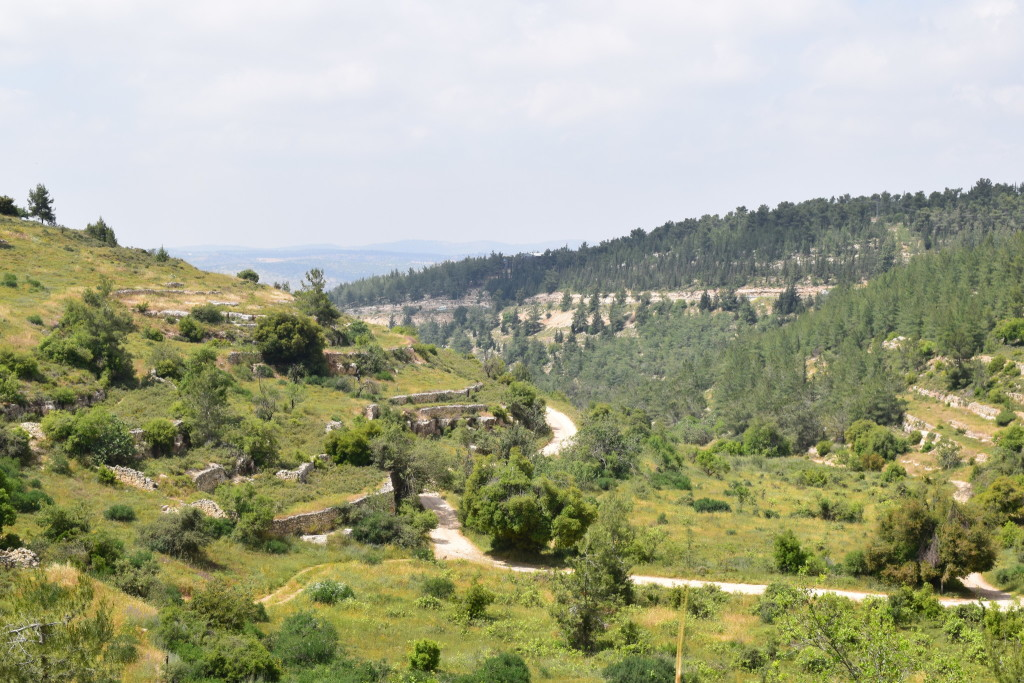 Nahal Masuot, one of the creek beds which drain towards the coastal plain from Gush Etzion. Hiking here one comes across ancient terraced agriculture, natural springs, ancient caves, vineyards and locals enjoying the biblical landscape.