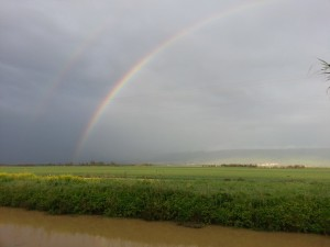 A rainbow above the Golan Heights and Hula Valley during a Spring rainstorm, from the Agamon Hula.