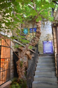 The Fig Tree Courtyard, so named for the Fig tree which has been nursed back to health by local developers now is home to several art galleries. Formerly it was a family residence and it still contains a water cistern, visible in the courtyard.